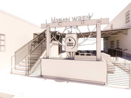Urban Wren
